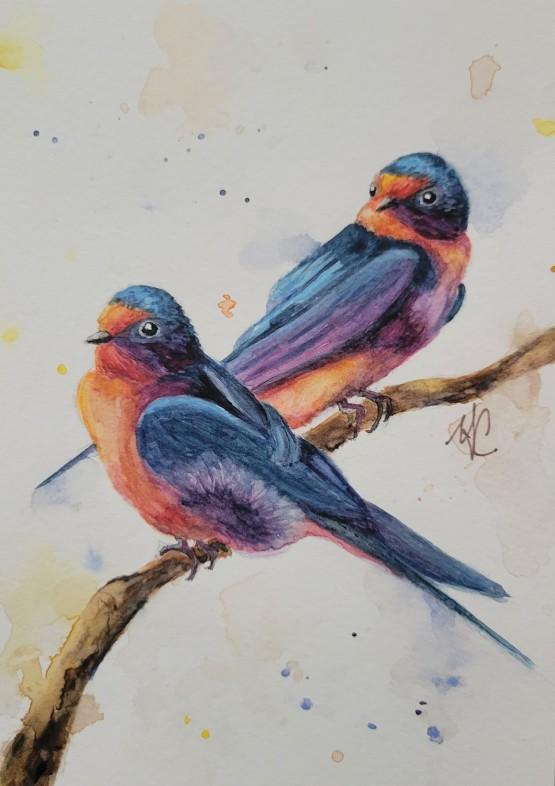 BarnSwallows